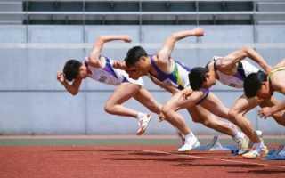 Роль спорта в жизни людей эссе. Роль спорта в жизни человека (эссе) — Эссе