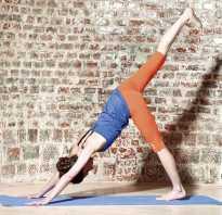 Йога против целлюлита отзывы. Собака головой вниз
