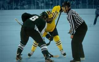 Сколько игроков в хоккейной команде. Правила игры в хоккей с шайбой на льду