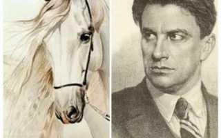 Анализа произведения хорошее отношение к лошадям. «Хорошее отношение к лошадям», анализ стихотворения Маяковского
