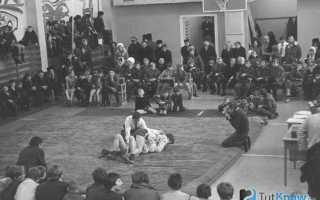 Как научиться дзюдо в домашних условиях. Как научиться драться в домашних условиях