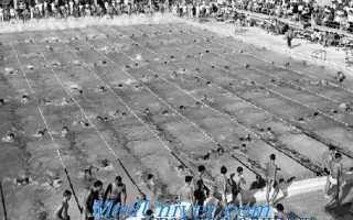 Олимпийские чемпионы по плаванию ссср. Олимпийская история плавания