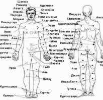 Терапевтические марма точки практикам круги и восьмерки. Мармы или энергетические точки