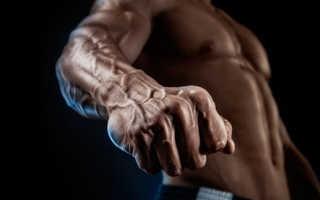 Как натренировать запястья. Зачем качать мышцы кистей рук