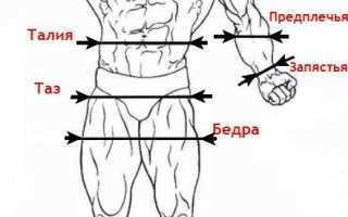 Как измерить свои параметры фигуры. Антропометрия и пропорции в бодибилдинге