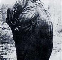Как выглядит жирный человек. Очень толстые люди: фото