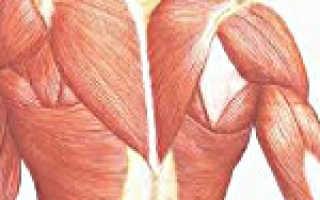 Неврологическое заболевание мышц. Миотония, миоплегия и другие наследственные нервно-мышечные заболевания