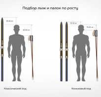 Как подобрать лыжные палки по росту таблица. Подбор параметров лыж и палок