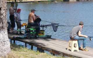 Бизнес план платной рыбалки. Пошаговый бизнес-план платной рыбалки с нуля