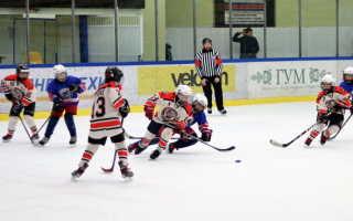 Сколько хоккеистов в команде на льду. Хоккейный словарь