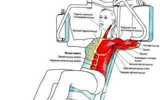 Тренировка зубчатых мышц. Как накачать зубчатые мышцы