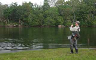 Отчеты о рыбалке кременчуг 21.06. Рыбалка в Кременчуге: где можно хорошо порыбачить