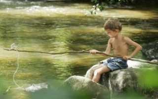 Что нужно знать начинающему рыбаку. Основы рыбалки