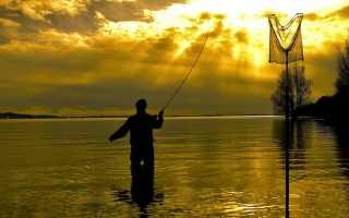 Болонская удочка выбор удилища. Болонская рыбалка: оснастка для начинающих