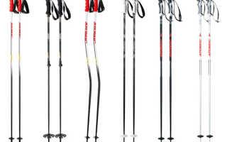 Палки к лыжам как называются. Как выбрать лыжные палки