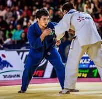 Чем отличаются виды боевых искусств друг от друга? Чем отличается самбо от дзюдо — как определиться с выбором.