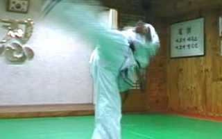 Как научиться делать удар ногой с разворота. Как научиться выполнять удар ногой