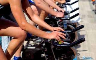 Подготовительный период тренировки велосипедистов-шоссейников. Тренировка велосипедиста — особенности и рекомендации