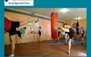 Упражнения для кикбоксинга: силовые и физические, дома начинающим, тренировки в тренажерном зале. Уроки кикбоксинга