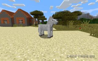 Что ест лошадь скелет в майнкрафт. Как приручить лошадь в Minecraft