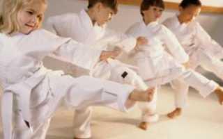 Боевое искусство айкидо: для детей (отзывы). Что лучше для ребенка — карате или айкидо? Детские спортивные секции айкидо