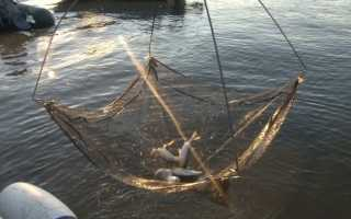Как сделать телевизор рыболовная снасть. Самодельный рыболовный экран – легко и просто