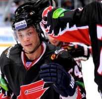 Название российской команды по хоккею. История названий и прозвища команд КХЛ