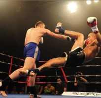 История муай тай. Краткая история тайского бокса
