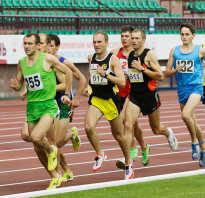 Почему бегуны бегут против часовой стрелки. Почему на стадионах бегают против часовой стрелки: особенности занятий легкой атлетикой, направление движения