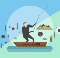 Организация платной рыбалки на пруду. Как открыть платную рыбалку