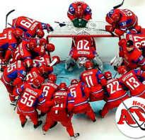 Сколько человек в одной команде в хоккее. Сколько игроков в хоккейной команде