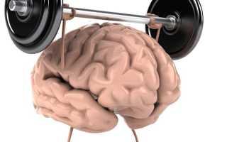 Мышцы посылают сигналы в мозг. Головной мозг и упражнения