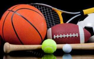 Мнение специалистов о профессиональном спорте. Как отличить профессиональный спорт от любительского
