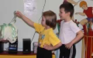 Занятия физкультурой в детском саду старшая группа. План занятия по физкультуре в старшей группе «Учимся владеть мячом