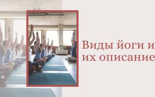 Виды йоги и их описание для начинающих. Виды йоги для начинающих