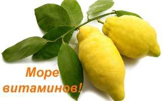 Правда ли что лимон сжигает жиры. Лимон для жиросжигания: это работает