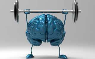 Как развить связь мозг мышцы в бодибилдинге. От электрического сигнала до движения