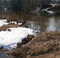 Клюет ли рыба весной в мутной воде. Рыбалка в мутной воде весной