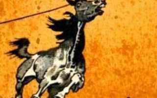 Произведения русских писателей о крестьянских лошадях. Росинант и другие