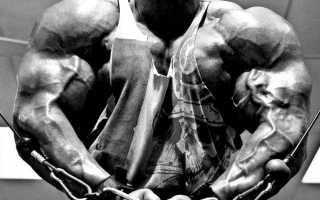 Принцип пикового сокращения. Принцип пикового сокращения мышц Что такое пиковое сокращение