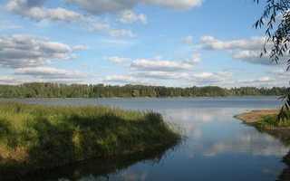 Весёлый ветер на Истре. В истринской долине откроется центр водных видов спорта веселый ветер