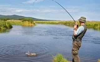 Бизнес-план платной рыбалки. Аренда озера для рыборазведения цена, бизнес план платной рыбалки