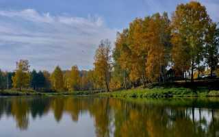 Где берет начало река иня исток. Река Иня и её экология