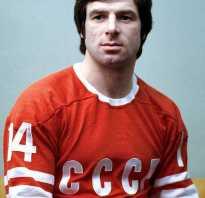 Валерий харламов хоккеист краткая биография. Валерий Харламов: биография, личная жизнь, жена, дети, смерть (фото)
