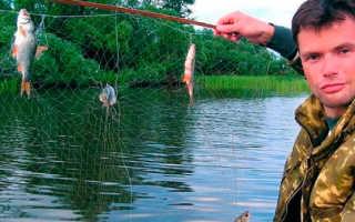 Как сделать экран рыболовный. Что такое рыболовный экран и как его изготовить своими руками