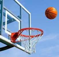 На какую высоту крепить баскетбольное кольцо. Баскетбольная корзина