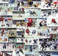 Из скольки человек состоит хоккейная команда. Хоккейный словарь