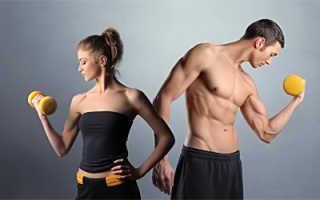 Какие ионы необходимы для сокращения мышц. Спортивное питание и здоровье