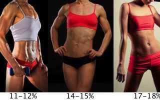 Норма воды в организме женщины в процентах. Чем опасен висцеральный жир? Как узнать свой процент жира
