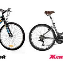 Женская рама велосипеда. Как отличить женский велосипед от мужского: особенности, размеры и рекомендации